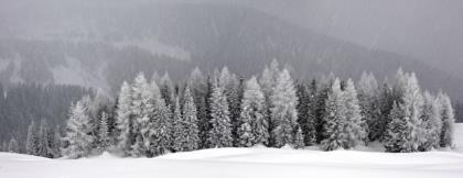 Nella-neve