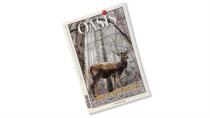 Oasis - 2018-FVG