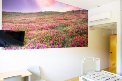 Ospedale Gemona2